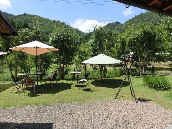 開放的なテラス席で絶景とカフェを楽しんで