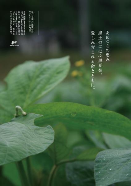 「虫が生きられる畑」葉山さんの思いが詰まった写真をあしらったチラシ